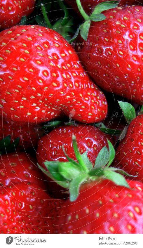 Fruchtala-a-a-a-a-a-a-a-rm Lebensmittel Ernährung Pflanze lecker saftig süß rot Gesundheit fruchtig Erdbeeren Komplementärfarbe verführerisch Detailaufnahme