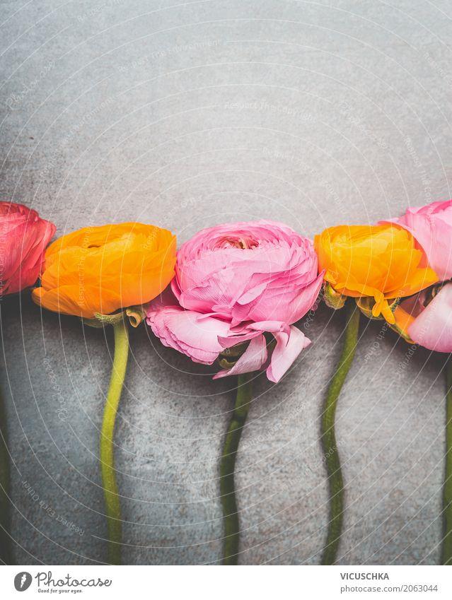 Schöne Blumen auf Grau elegant Stil Design Sommer Dekoration & Verzierung Feste & Feiern Natur Pflanze Blatt Blüte Blumenstrauß Blühend Liebe Hintergrundbild