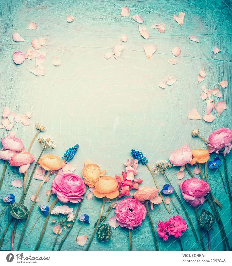 Blauer Hintergrund mit Blumen und Blütenblätter Natur Pflanze Sommer Blatt Lifestyle Frühling Liebe Hintergrundbild Stil Design rosa Dekoration & Verzierung