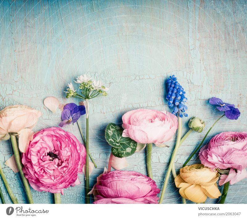 Blumen auf blauem Hintergrund Natur Pflanze Lifestyle Blüte Liebe Hintergrundbild Stil Design rosa Dekoration & Verzierung retro Geburtstag Blühend Romantik