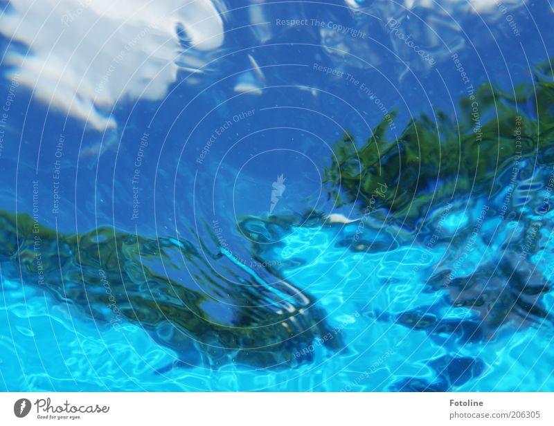 unter Wasser Natur Urelemente Himmel Wolken Sommer Wärme hell nass blau grün weiß Unterwasseraufnahme Schwimmbad Farbfoto mehrfarbig Außenaufnahme Experiment