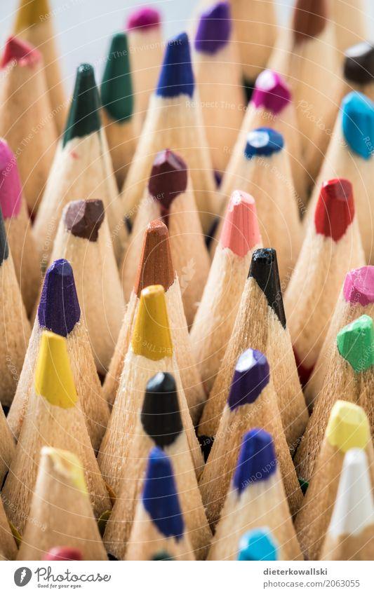 Buntstifte Bildung Kindergarten Schule lernen zeichnen schreiben Freizeit & Hobby Inspiration Kindheit Konzentration Kreativität Kunst Wissen Zukunft Farbfoto