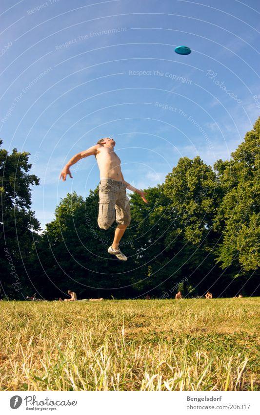 Frisbee-König Mensch Sommer Ferien & Urlaub & Reisen Sport Wiese Spielen springen Freiheit Gras Bewegung Fuß Park Schuhe Gesundheit Körper