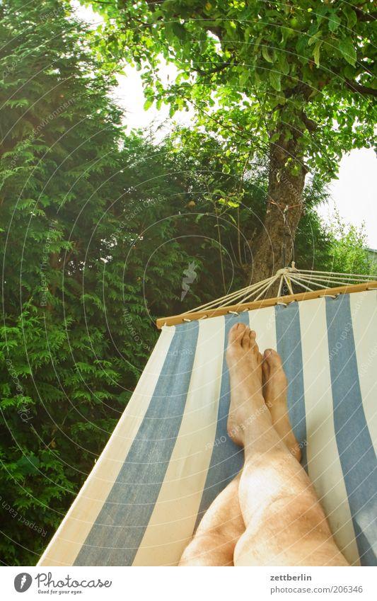 Hängematte Baum Ferien & Urlaub & Reisen ruhig Erholung Garten Fuß Beine Pause liegen Streifen Baumstamm Hecke Barfuß schaukeln Apfelbaum