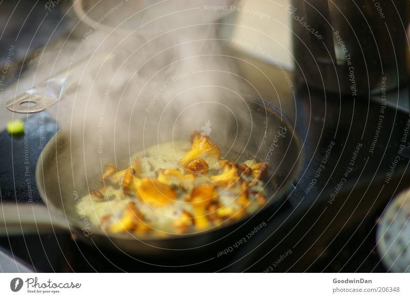Alltag Lebensmittel Gemüse Pilz Pfifferlinge Ernährung Arbeit & Erwerbstätigkeit Küche Herd & Backofen Pfanne authentisch heiß lecker Wärme Gefühle Tatkraft