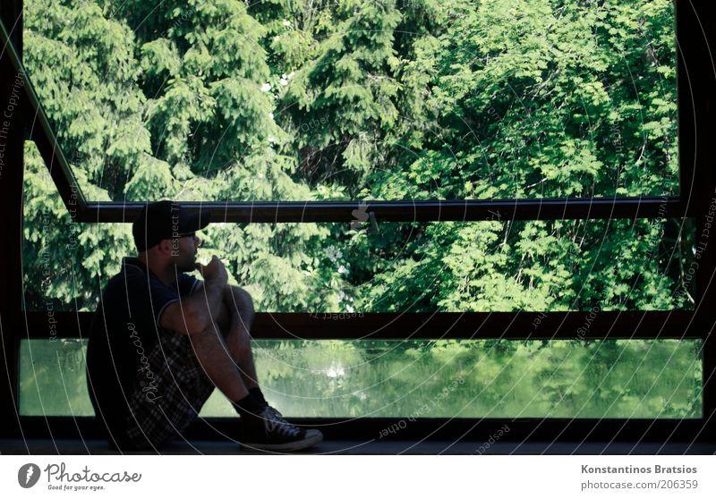von einer grünen Zukunft träumen Häusliches Leben Wohnung Garten Raum Wohnzimmer Fenster Fensterbrett Mensch maskulin Mann Erwachsene 1 18-30 Jahre Jugendliche