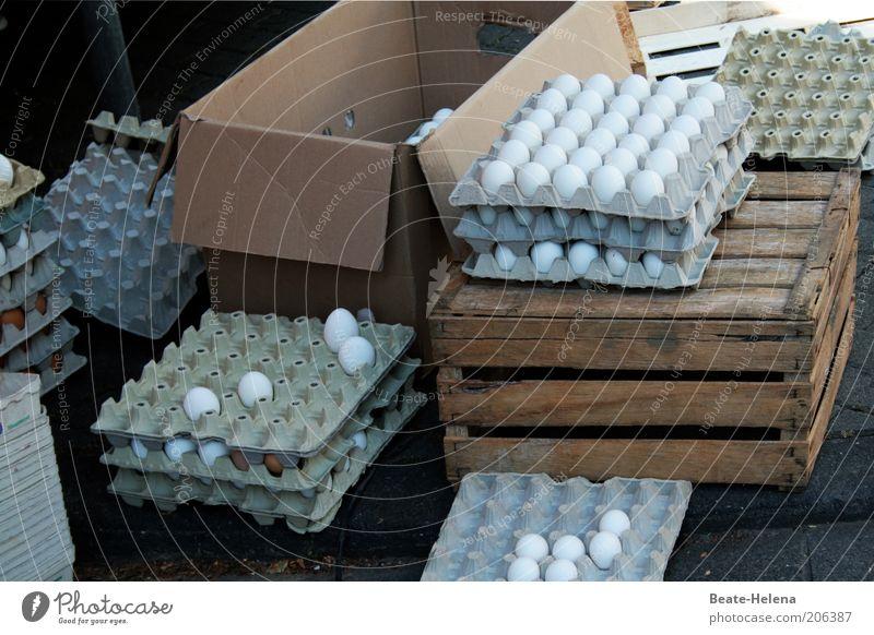 Herr Meier, was kosten die Eier? Natur weiß Ernährung Holz Lebensmittel frisch natürlich Karton Markt Kiste Bioprodukte Ei Qualität Verpackung Marktstand Eierschale