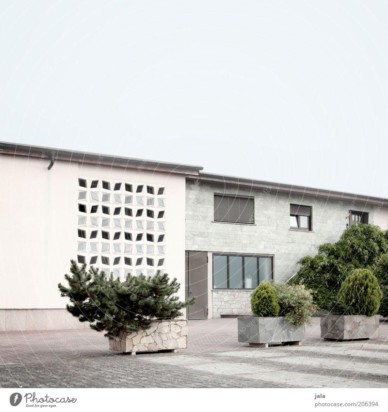 pebbles flintstone's house Himmel weiß grün blau Pflanze Haus Wand Fenster grau Stein Mauer Gebäude Architektur Tür Fassade