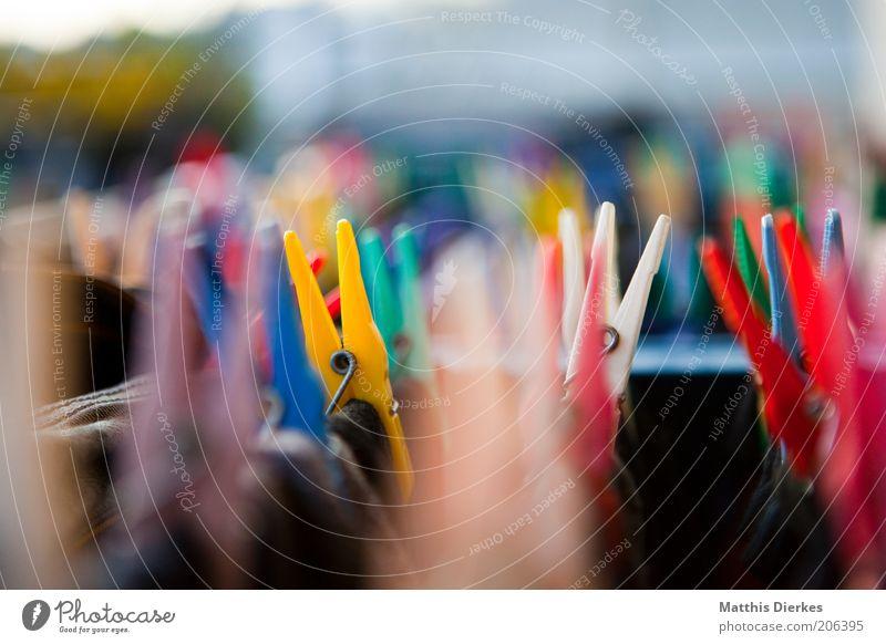 Wäscheklammern frisch Sauberkeit gewaschen Bekleidung Farbfoto Außenaufnahme Unschärfe Schwache Tiefenschärfe mehrfarbig Klammer festhalten Haushaltsführung