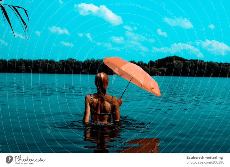 so schmeckt der Sommer exotisch Ferien & Urlaub & Reisen Ausflug Sommerurlaub Sonnenbad feminin Rücken 18-30 Jahre Jugendliche Erwachsene Wasser Seeufer Bikini
