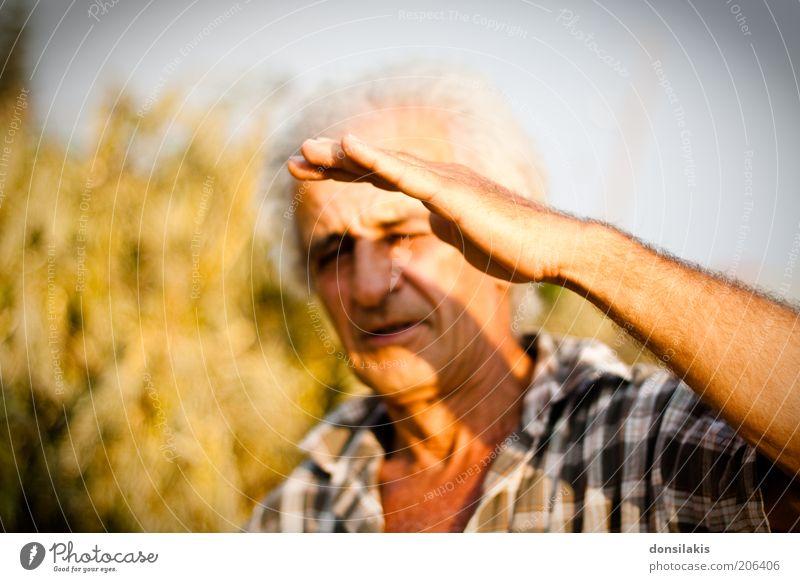 ganz schön hell Mensch Mann Hand alt Senior gelb Wärme Erwachsene maskulin Schutz heiß Hemd blenden kariert Wetterschutz Männlicher Senior