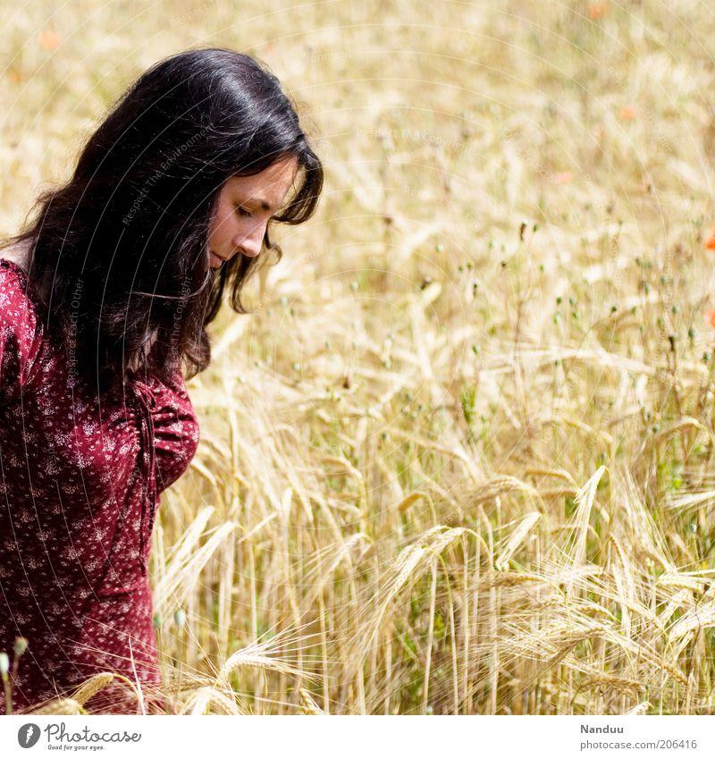 Ein schöner Tag Frau Mensch Sommer Erholung feminin Feld Erwachsene Spaziergang Freizeit & Hobby Lebensfreude natürlich genießen Kornfeld langhaarig Freude