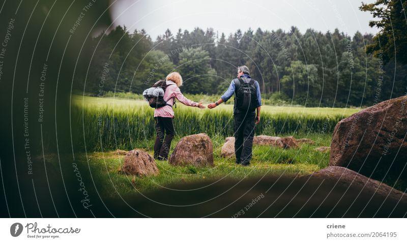 Reifes Paar, das Abflussrinnenfelder wandert Mensch Frau Mann Freude Wald Erwachsene Leben Lifestyle Liebe Senior Sport Zusammensein Freizeit & Hobby wandern
