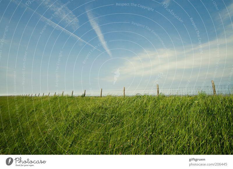 borderline Umwelt Natur Landschaft Himmel Wolken Schönes Wetter Gras Küste Nordsee blau grün Unendlichkeit Zaun Kondensstreifen Streifen Deich Grenze Barriere