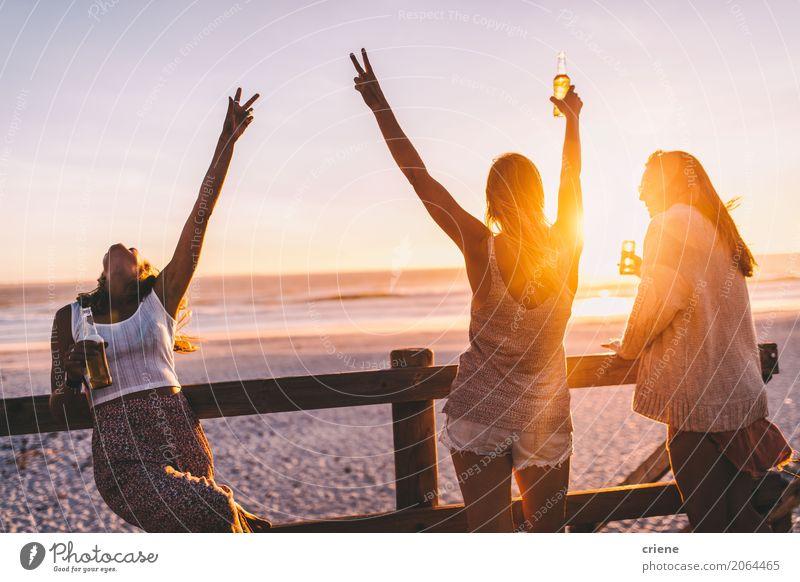 Gruppe glückliche Freunde, die mit Getränken im Sonnenuntergang feiern trinken Alkohol Bier Flasche Lifestyle Freude Ferien & Urlaub & Reisen Freiheit Sommer