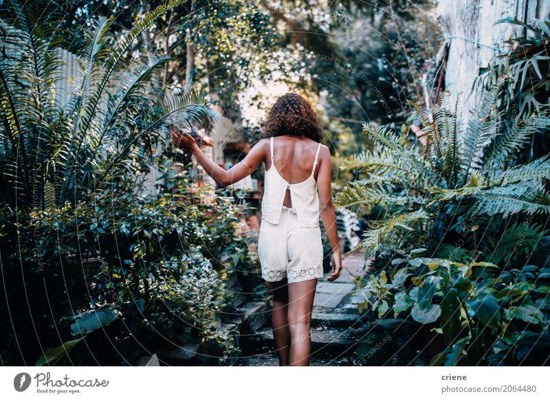 Rückansicht einer Afroamerikanerin im tropischen Garten schön Abenteuer Sommer Mensch feminin Junge Frau Jugendliche Natur Pflanze Wärme Sträucher Farn Blatt