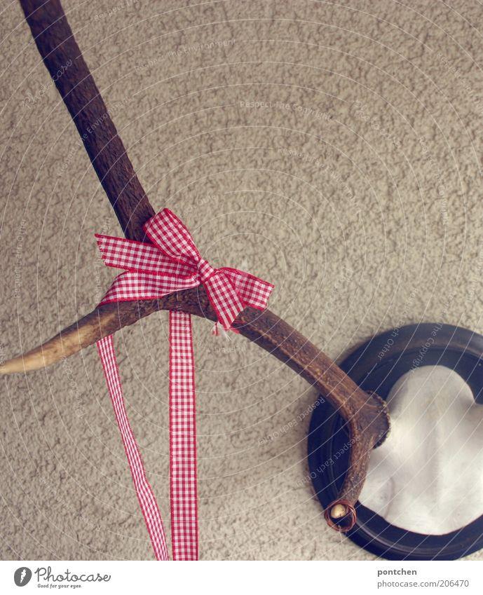 Geschenk alt Tier braun Wildtier außergewöhnlich Stoff Dekoration & Verzierung Schnur Horn Tradition Hirsche Schleife Skelett aufhängen Verpackung Tierschädel