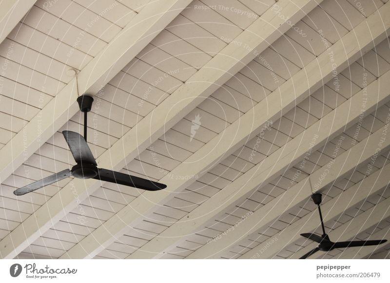 Windkraftanlagen ruhig Holz Ventilator Farbfoto Innenaufnahme Menschenleer Dachgebälk Kühlung