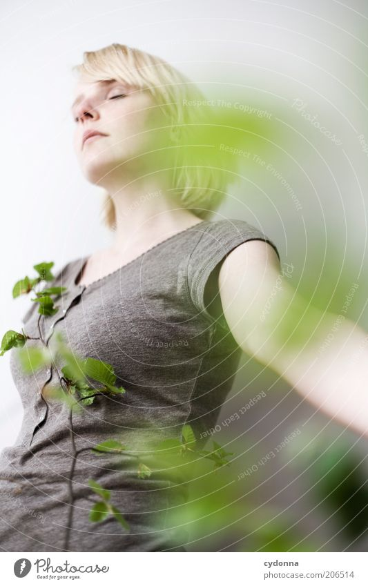 Fallen lassen Mensch Natur Jugendliche schön Pflanze Blatt ruhig Erholung Leben Freiheit Frühling träumen Gesundheit Zufriedenheit blond