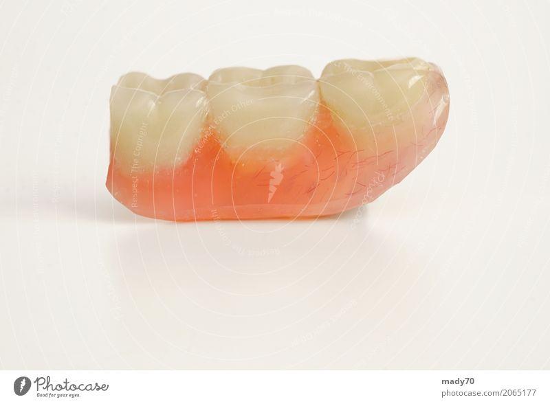 Drei Prothesenzähne getrennt auf weißem Hintergrund Gesundheitswesen Medikament Labor Mensch Zähne Brücke frei falsch drei Prothetik vereinzelt künstlich