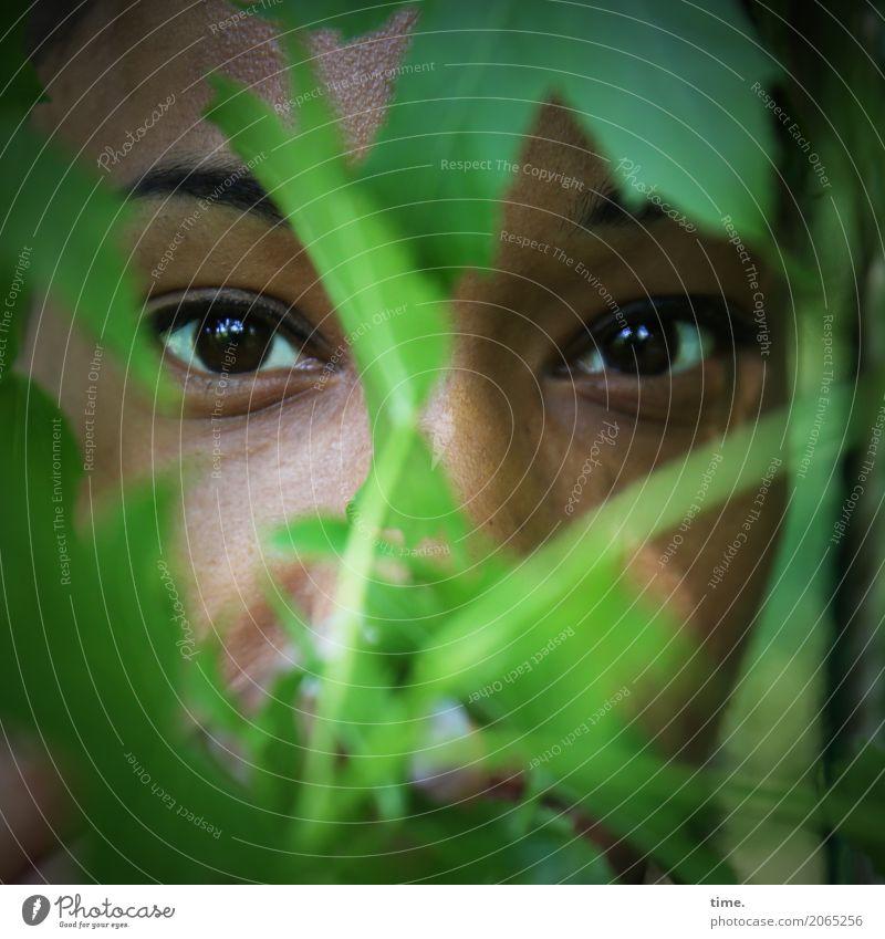 . feminin Frau Erwachsene Gesicht Auge 1 Mensch Blatt beobachten Blick warten Sicherheit Schutz Wachsamkeit Gelassenheit ruhig Neugier Interesse Überraschung