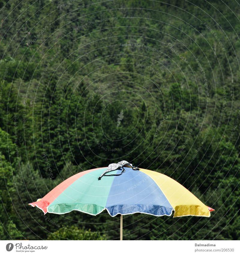 Sommer, Sonne, Sonnenschirm Natur Sommer Ferien & Urlaub & Reisen Wald Tourismus Freizeit & Hobby Bikini Sonnenschirm Schönes Wetter trocknen Sommerurlaub BH