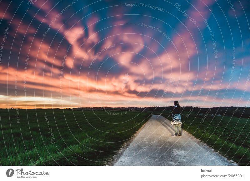 Quo vadis? Mensch Frau Himmel Natur Landschaft Einsamkeit Wolken ruhig Ferne dunkel Erwachsene Straße Leben Wege & Pfade feminin außergewöhnlich