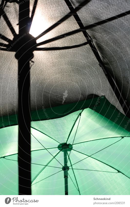 Sonnenschutz grün Sommer ruhig schwarz Erholung Regenschirm Sonnenschirm genießen Schönes Wetter Stab Schatten Strebe Schutz Licht gespannt