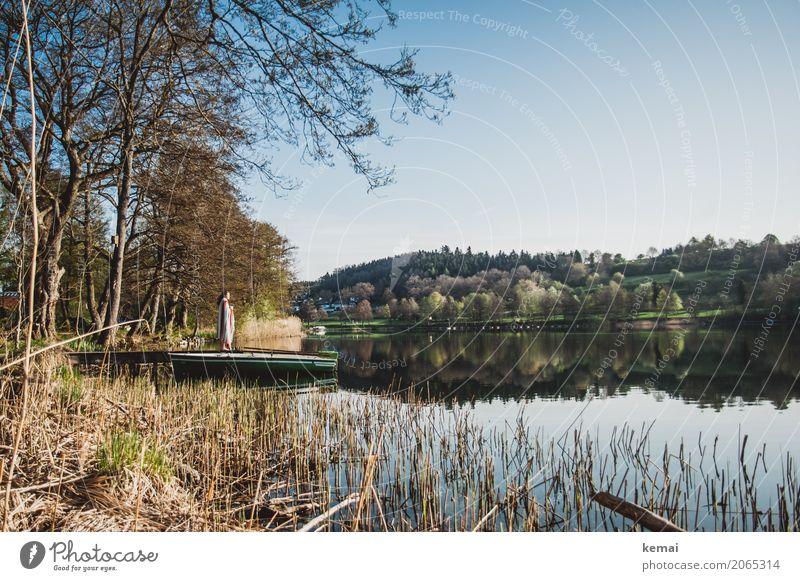 Morgenstimmung am See Mensch Natur Wasser Landschaft Erholung ruhig Ferne Lifestyle Freiheit Ausflug Freizeit & Hobby Zufriedenheit frisch stehen authentisch