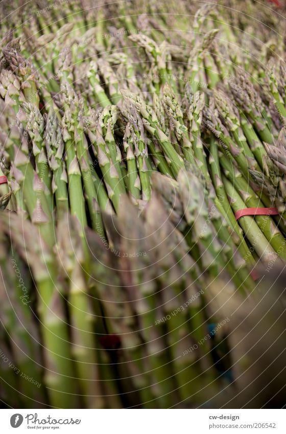 FRESH ASPARAGUS Natur grün Pflanze Sommer Ernährung Lebensmittel frisch Gemüse Bioprodukte Grünpflanze Spargel Vegetarische Ernährung Nutzpflanze Pflanzenteile