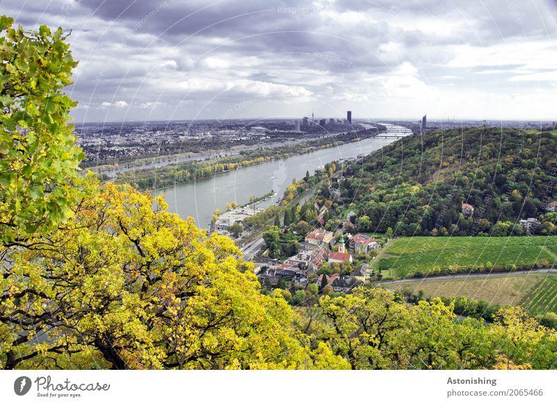 Wien in der Ferne Umwelt Natur Landschaft Pflanze Wasser Himmel Wolken Gewitterwolken Horizont Wetter schlechtes Wetter Unwetter Baum Blatt Wald Hügel Flussufer