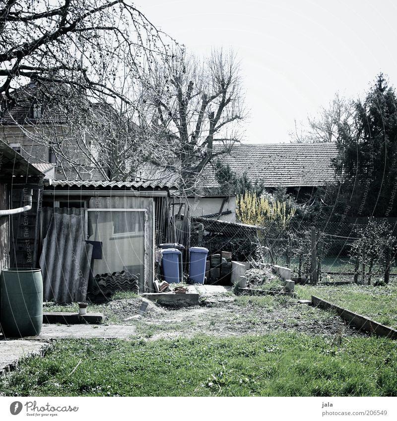 im garten hinterm haus Himmel Baum Pflanze Winter Haus Gras Garten Gebäude trist Rasen Hütte Bauwerk Müllbehälter unordentlich Gartenhaus Schrebergarten