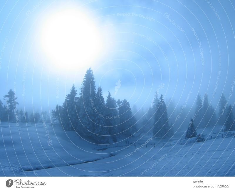 blauer nebel Natur blau Farbe Sonne Baum Landschaft Wolken Winter Wald Berge u. Gebirge Schnee Stimmung Eis Nebel Frost Glaube