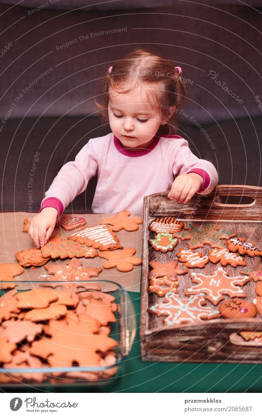Kleines Mädchen, das Weihnachtslebkuchen auf hölzernen Behälter setzt Lifestyle Dekoration & Verzierung Tisch Feste & Feiern Weihnachten & Advent Kind Mensch