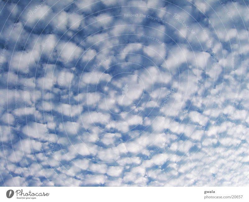 wattewolken Farbfoto Außenaufnahme Muster Strukturen & Formen Menschenleer Tag Natur Luft Himmel Wolken Wetter weich blau Hintergrund neutral Hintergrundbild