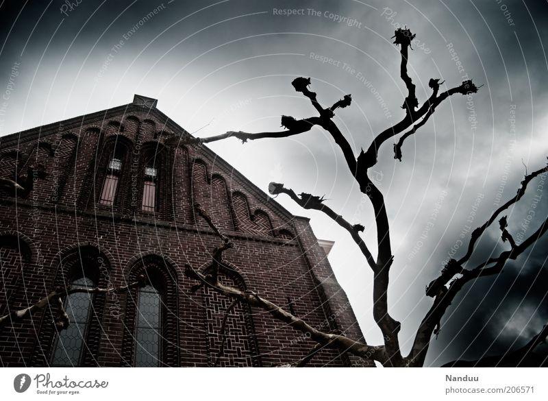 Die dunkle Seite der Macht Kirche Bauwerk bedrohlich dunkel gruselig Angst Baum beschnitten eigenwillig aufwärts himmelwärts Fassade unheimlich geheimnisvoll
