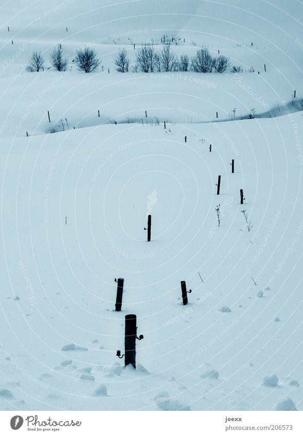 Kalt Natur weiß Winter ruhig Einsamkeit kalt Schnee Landschaft Feld Frost natürlich Idylle Schneelandschaft Pfosten Tiefschnee Schneedecke