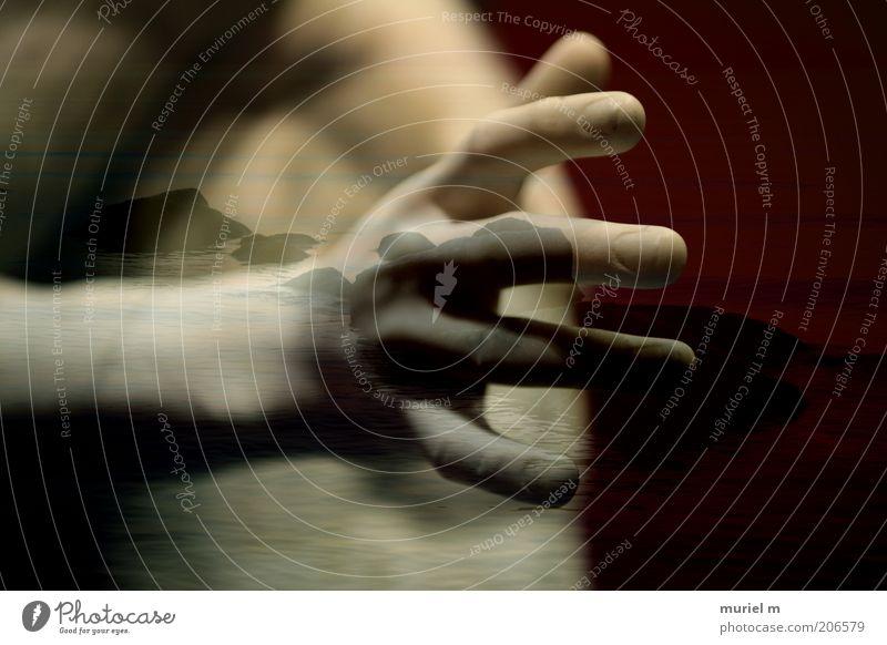 Hand am Meer Mensch maskulin Mann Erwachsene Arme Finger 1 Kunstwerk Landschaft Wasser Horizont Küste berühren Bewegung Erholung Gefühle Kraft schön ästhetisch