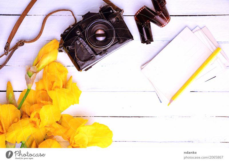 Vintage Filmkamera in einem Lederetui Ferien & Urlaub & Reisen Tisch Fotokamera Blume Blumenstrauß Holz alt Blühend oben retro braun gelb weiß Nostalgie