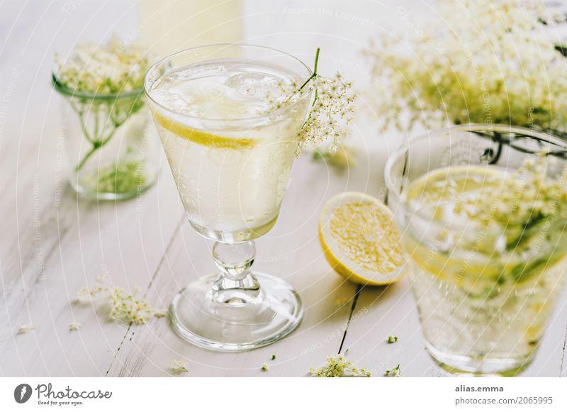 Holunderblütenschorle Holunderbusch Blüte Schorle Wasser Getränk trinken Zitrone Glas frisch Essen zubereiten altehrwürdig lecker Erfrischung rezept Sommer süß