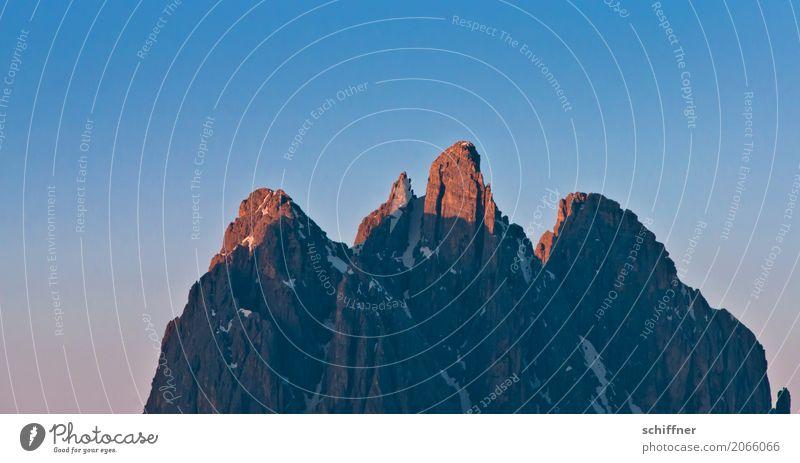 Gipfeltreffen Natur blau Berge u. Gebirge Felsen Schönes Wetter Spitze Schneebedeckte Gipfel Alpen Abenddämmerung Südtirol Abendsonne