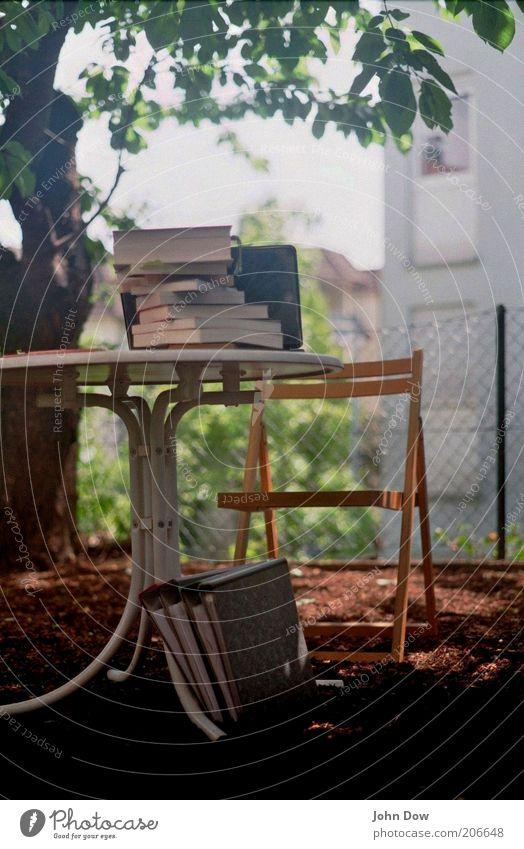 Plein-Air-Studieren II Bildung Schule lernen Studium Büroarbeit Arbeitsplatz Schönes Wetter Pflanze Blume Sträucher Idylle Tisch Klappstuhl Garten Gartenzaun