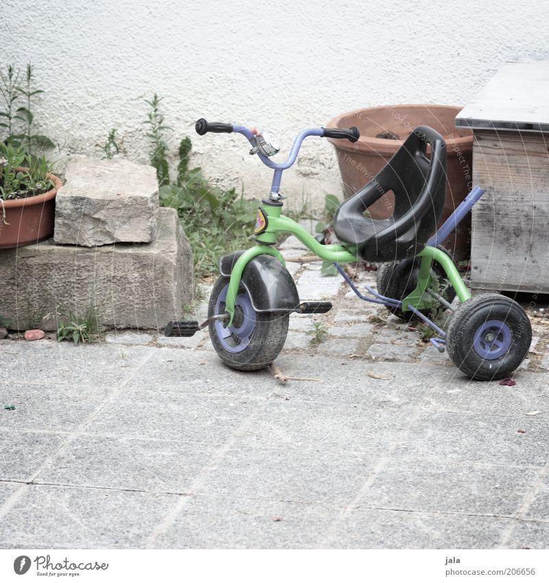 tricycle Topfpflanze Fassade Dreirad Stein grün violett Farbfoto Außenaufnahme Menschenleer Textfreiraum unten Tag Steinboden Spielzeug Hinterhof parken