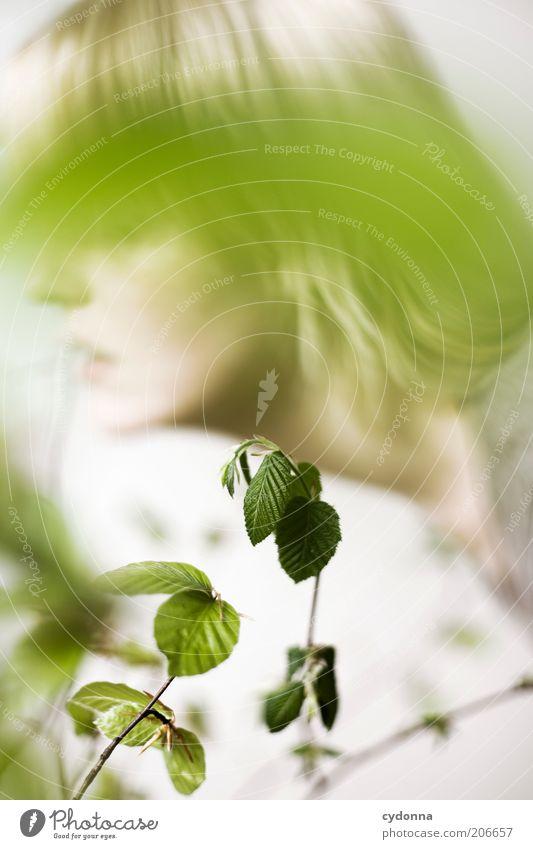 Vordergründig Mensch Natur Jugendliche schön Pflanze Blatt ruhig Gesicht Erholung Leben Frühling träumen Gesundheit blond Zeit