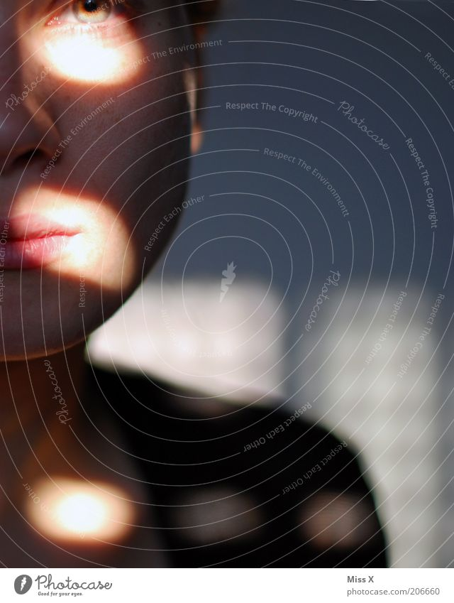 Schatten Mensch feminin Junge Frau Jugendliche Gesicht 1 18-30 Jahre Erwachsene Traurigkeit Sorge Liebeskummer Punkt Farbfoto Innenaufnahme Textfreiraum rechts