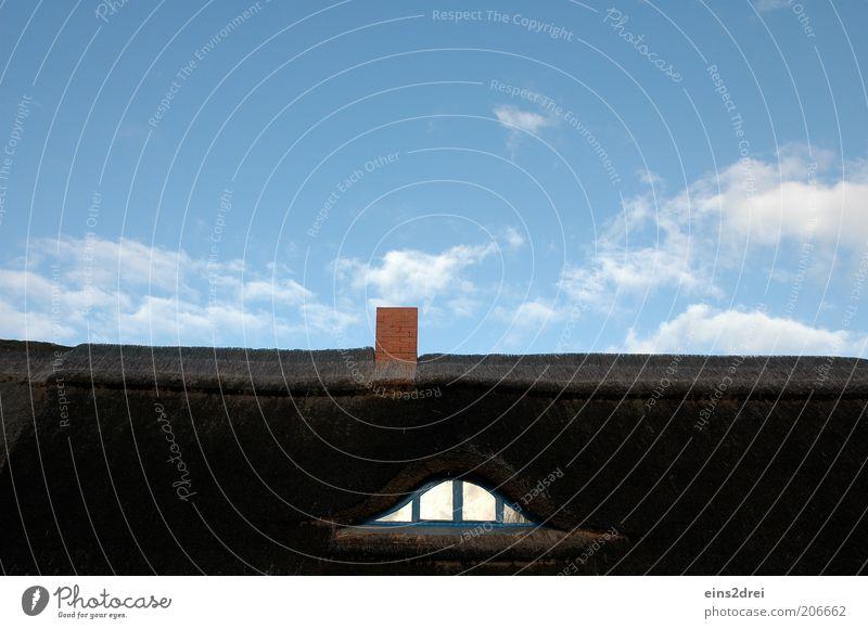 Ich fühle mich beobachtet Stil Himmel Wolken Sommer Schönes Wetter Menschenleer Haus Architektur Fenster Dach Schornstein Reetdach Bogen Fensterscheibe