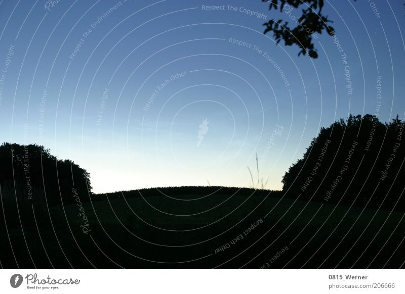 Sunset Black and Blue Natur Landschaft Himmel Wolkenloser Himmel Nachthimmel Horizont Sommer Schönes Wetter Pflanze Hügel träumen blau schwarz weiß Farbfoto