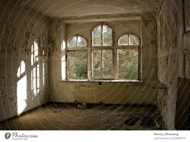Beelitz Sonnenstrahlen Natur alt Einsamkeit Wand Fenster Holz träumen Stein Mauer Gebäude hell braun Raum dreckig Architektur Perspektive