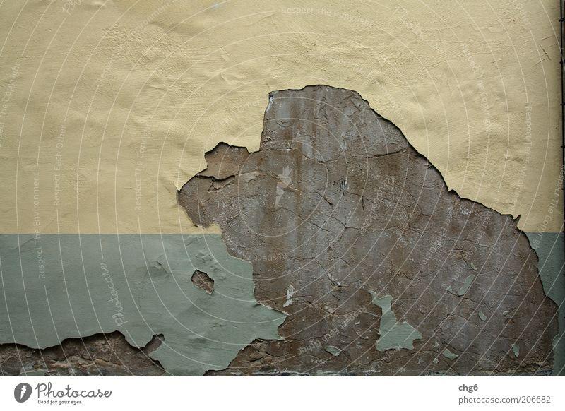 Putziges Tierchen Fassade Stein Beton braun gelb grün Verfall Zerstörung verfallen Farbfoto Gedeckte Farben Außenaufnahme Menschenleer Textfreiraum links