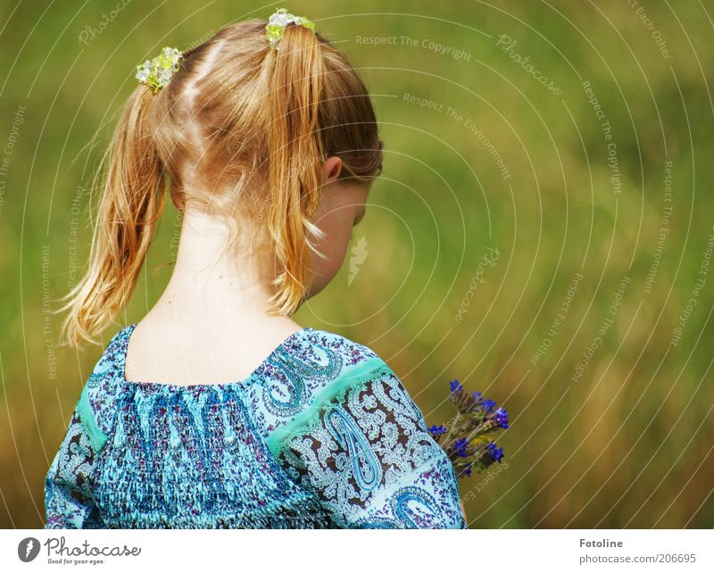 Blümchen für Mama Mensch Kind Mädchen Kindheit Kopf Haare & Frisuren Rücken Umwelt Natur Pflanze Sommer Wärme Blume Blüte Wildpflanze hell natürlich Zopf Hals